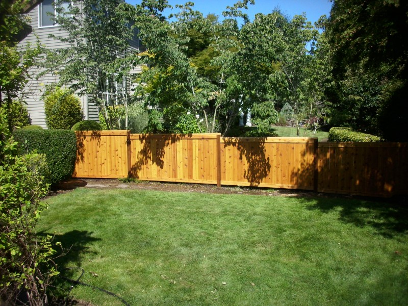 Stained cedar picture frame fence