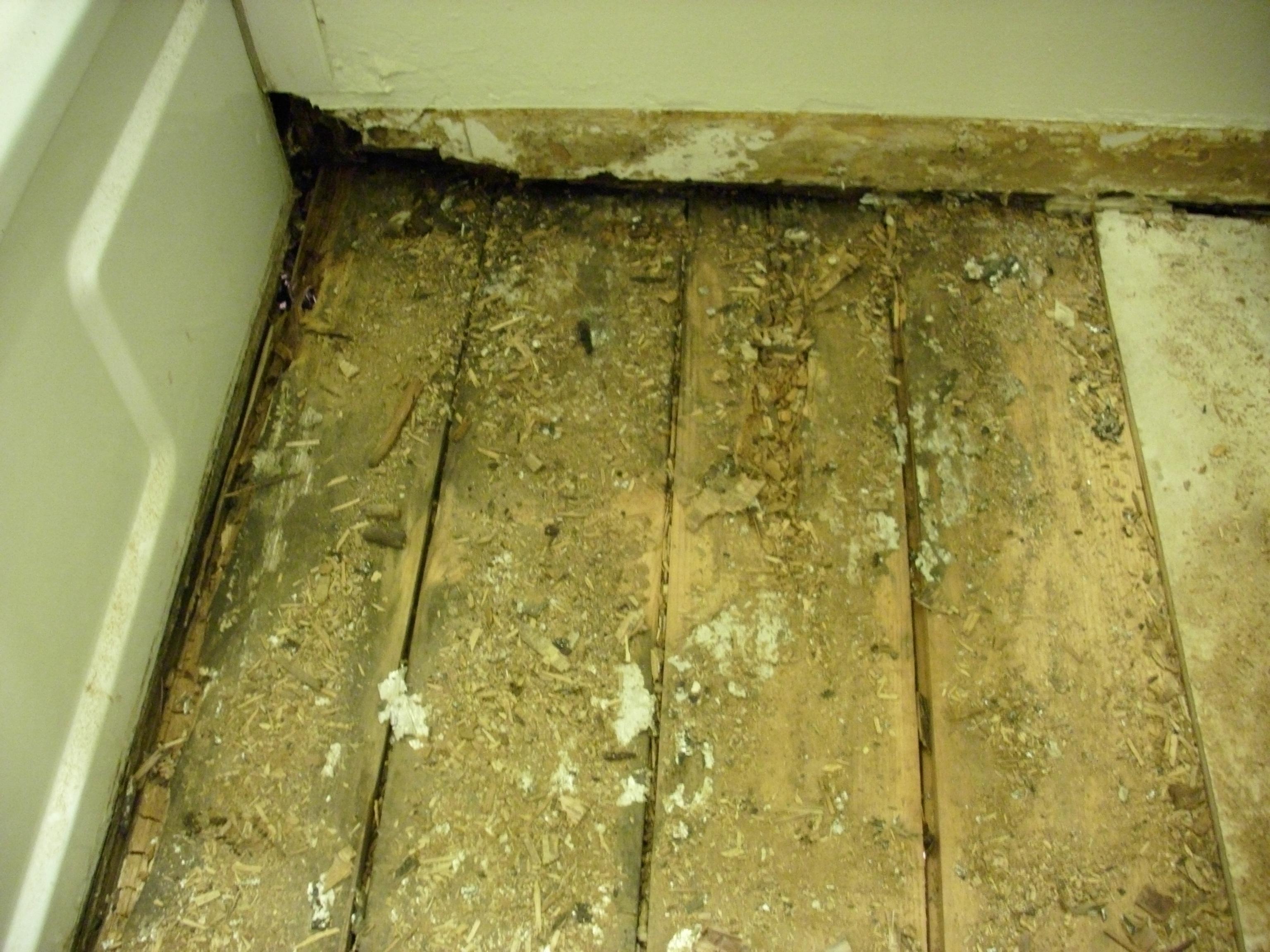 Bathroom Floor Replacement Homswet